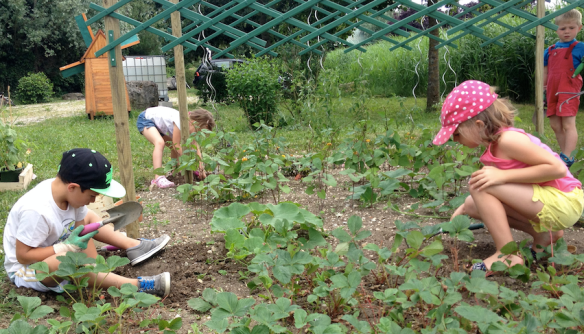 jardiniers3